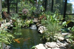pond installation