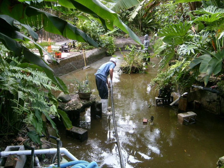 Pond Maintenance Service Backyard Getaway