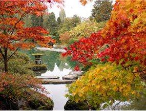 falll pond