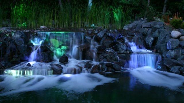 Pond Lighting For Every Budget Backyard Getaway