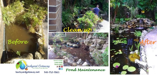 business pond clean up